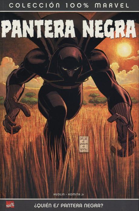100% Marvel. Pantera Negra: ¿Quién es Pantera Negra?