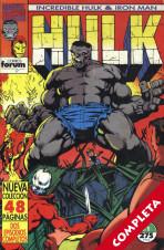 Hulk & Iron Man Vol.1 - Completa -