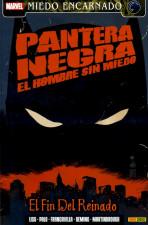Pantera Negra: El hombre sin miedo Vol.1 nº 2