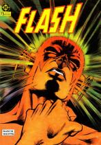 Flash Vol.1 nº 13