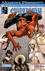 Marvel Knights: Spiderman Vol.1 nº 6